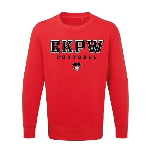 Carolina Panthers State Keychain